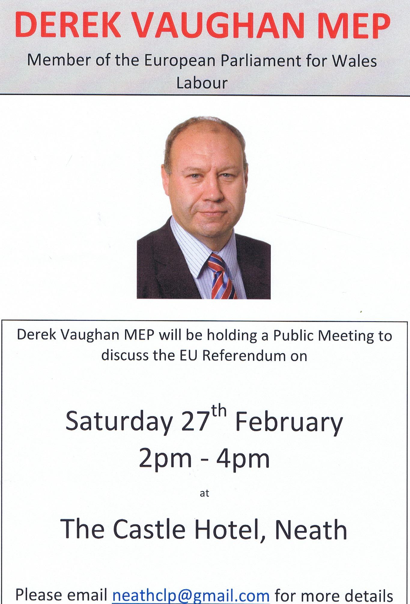 DV EU poster