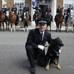 Police Dogs and horses – 14th November